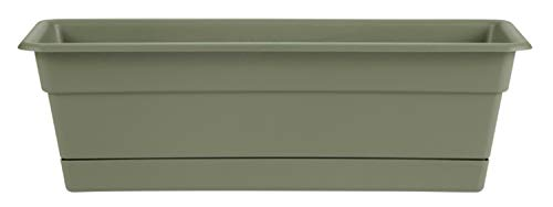 Bloem, Living Green DCBT18-42 Dura Cotta Plant Window Box, 18-Inch