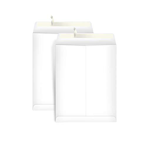 AmazonBasics Catalog Mailing Envelopes, Peel & Seal, 9x12 Inch, White, 100-Pack - AMZP15