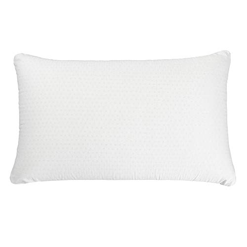 Simmons Beautyrest Beautyrest Latex Foam Pillow with Cover - 100% Talalay Latex Pillows - (Queen 2 Pack)