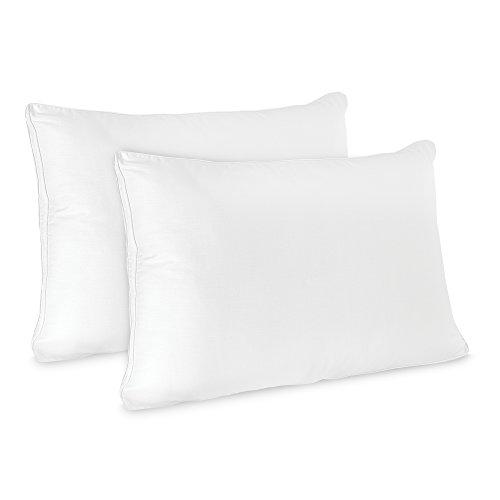 BioPEDIC Low Profile Hypoallergenic Flat Pillow (2 Pack),Standard/Queen