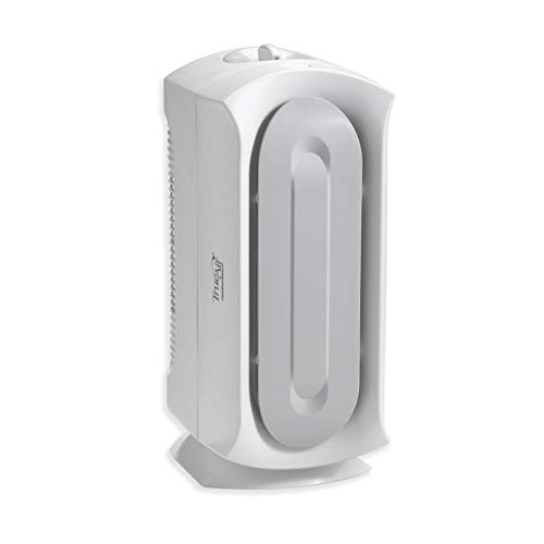 Hamilton Beach TrueAir Air Purifier for Home or Office with Permanent HEPA Filter for Allergies and Pets, Ultra Quiet, White (04383A)