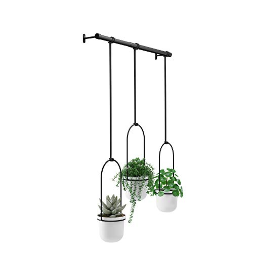 Umbra Triflora Hanging Planter, for Succulents, Herbs and Other Small Plants, Triple, White/Black