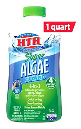 HTH 67032 Super Algae Guard Swimming Pool Algaecide Cleanser, 1 qt