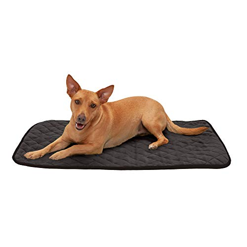 Furhaven Pet Dog Bed Heating Pad - ThermaNAP Quilted Plush Velvet Insulated Thermal Self-Warming Pet Bed Mat for Dogs and Cats, Espresso, Medium
