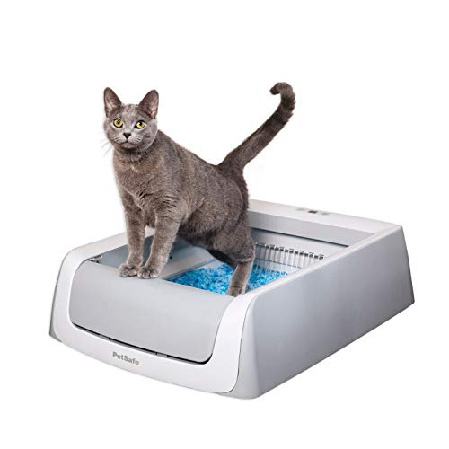 PetSafe ScoopFree Automatic Self-Cleaning Cat Litter Box  Includes Disposable Trays with Crystal Litter  2ND Generation, Grey, One Size Fits All (PAL00-16805)
