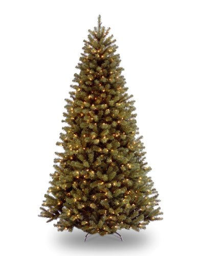 National Tree 7.5 Foot North Valley Spruce Tree with 550 Dual Color LED Lights and On/Off Switch, Hinged (NRV7-300LD-75S)