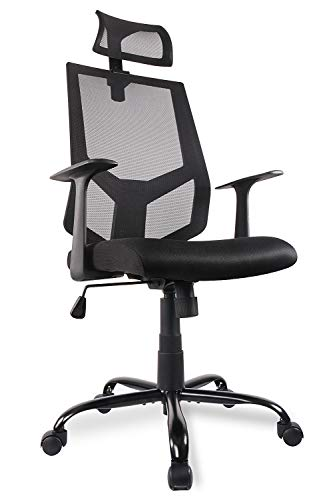 SMUGDESK Ergonomic Office Chair High Back Mesh with Adjustable Headrest Neck Support, Dark Black