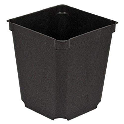 McConkey Square Nursery Pot, Case of 60