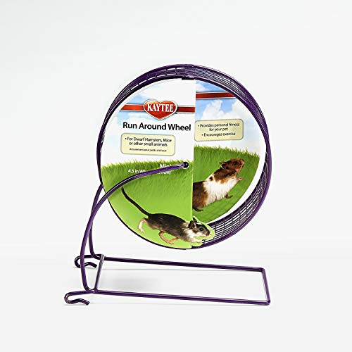 Kaytee Run-Around Exercise Wheel, Mini, 4.5', Colors Vary