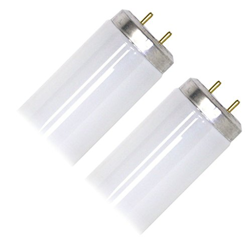 Sylvania 22462 - F34CWX/SS/2PK CP Straight T12 Fluorescent Tube Light Bulb