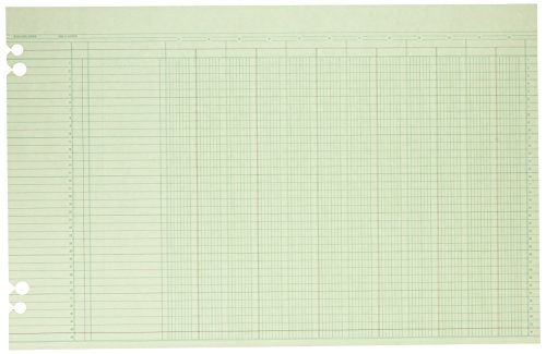 Wilson Jones Green Columnar Ruled Ledger Paper, 12 Columns and 36 Lines per Page, 11 x 17 Inches, 100 Sheets per Pack (WG50-12A)