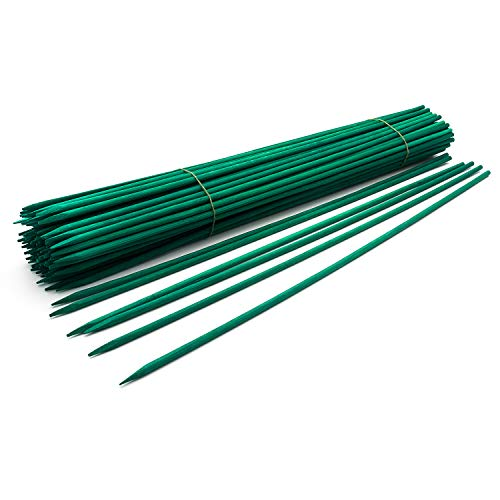 12' Green Wood Plant Stake, Floral Picks, Wooden Sign Posting Garden Sticks (100 Pcs) by Royal Imports