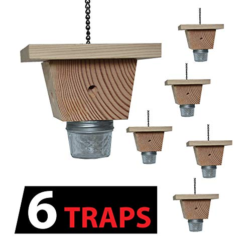 Mac's LLC Set of 6 of One of The Best Carpenter Bee Traps, Patent No. RE46.421