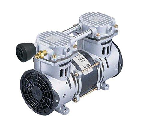 Lifeline LL-RP60P Rocking Piston Air Compressor – High Efficiency Air Compressor for Lake and Pond Bottom Aeration