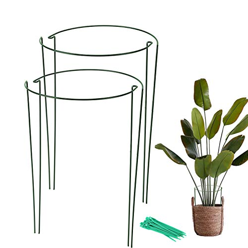 Garden Plant Support Stake 4 Pack,Tomato Cages for Garden,Metal Plant Supports Ring for Potted Plants,Tomato,Vine(10' Wide x 15.8' High)