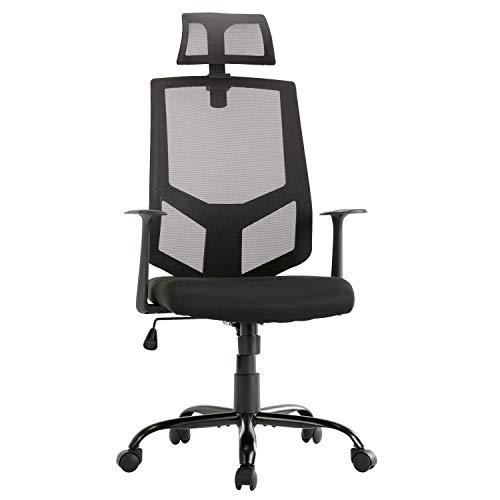 SMUGDESK Ergonomic Lumbar Support Mesh High Back Office Desk Task Chair, Black