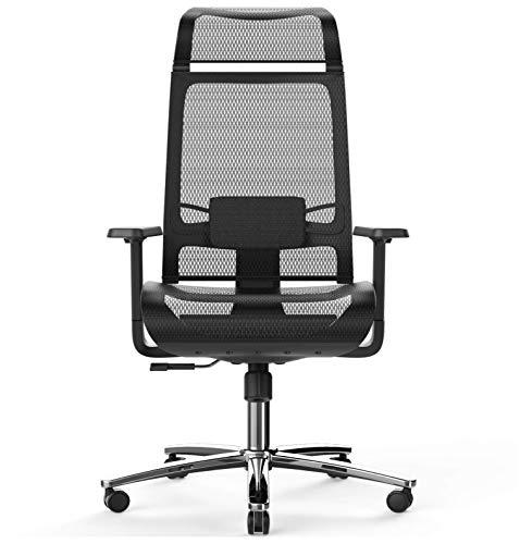 Bilkoh Mesh Office Chair Ergonomic Office Chair Computer Desk Chair, Mesh Seat and Back, Wide Headrest, Adjustable Lumbar Support and 3D Armrest (Black)