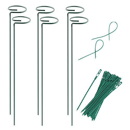 Plant Stake Support - 6 Pack, Garden Single Stem Support Stake Plant Cage Support Rings, Single Stem Plant Support Stakes, Plant Twist Ties, for Flowers Amaryllis Tomatoes Peony Lily Rose (15.9 inch)