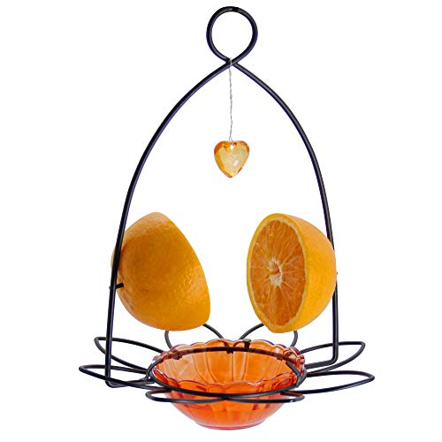 FORUP Oriole Bird Feeder, Orange Fruit Oriole Feeder
