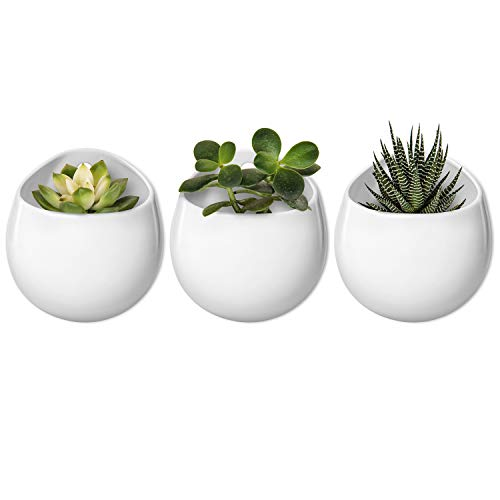 Mkono 4 Inch Wall Mounted Planter Round Ceramic Hanging Plant Holder Decorative Flower Display Vase Succulent Pots for Indoor Plants, Set of 3, White (Plants NOT Included)
