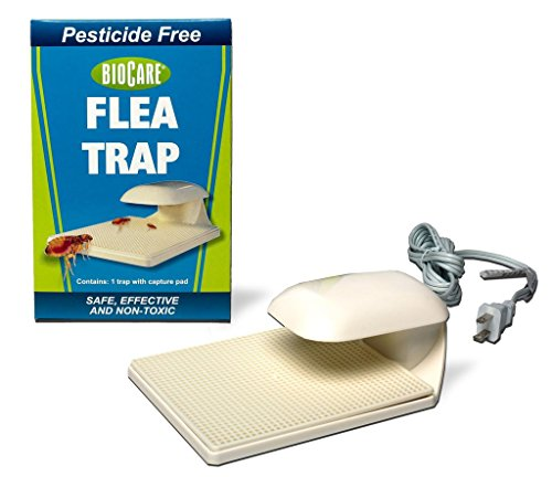 BioCare Indoor Flea Trap with Lightbulb and Sticky Capture Pad, Nontoxic and Pesticide-Free, Made in USA