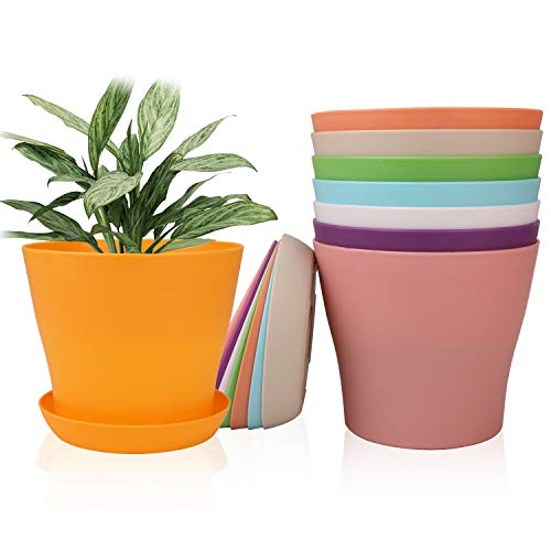 6.5 Inches Plastic Plant Pots with Drainage Holes, Ufrount Gardening Containers, Flower Pots, Perfect for Garden/Yard/Kitchen/Flower/Succulents - Set of 8 (8 Colors)