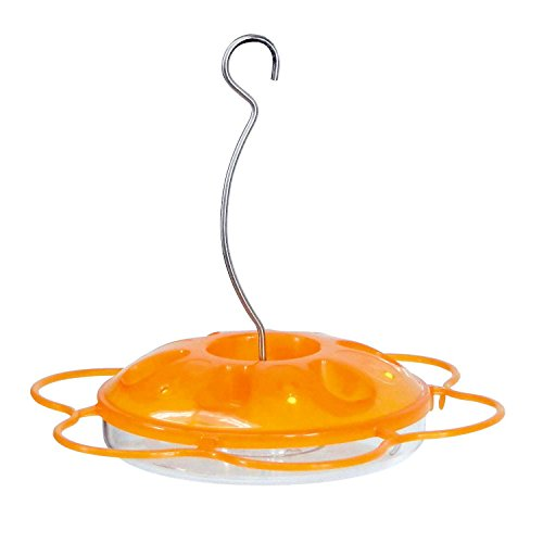 More Birds Oriole Feeder, Six Feeding Ports, Orange Feeder Saucer, 14-Ounce Capacity