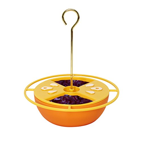 Heath Outdoor Products CF-131 Citrus Buffet Oriole Feeder