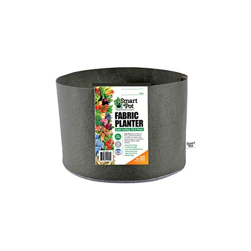 Smart Pots 10-Gallon Smart Pot Soft-Sided Container, Black