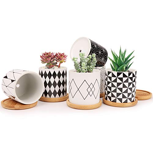 Ufrount 3 Inches Ceramic Planter Pot with Drainage Holes, Succulent Planter Pots Planting Pot Flower Pots for Mini Plant Perfect for Garden, Kitchen, Windowsill - Set of 6