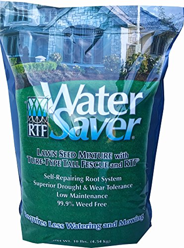 WaterSaver Grass Mixture with Turf-Type Tall Fescue Used to Seed New Lawn and Patch Up Jobs - Grows in Sun or Shade, 10 lbs - Covers 1/20 Acre