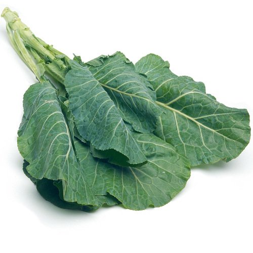 Georgia Southern Collard Seeds - Dark Blue-Green Cabbage-Like Delicious Leaves