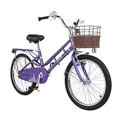 COEWSKE 20 Inch Kids Bike Fantasy-Style Children Leisure Bicycle with Basket Kickstand Included Fit for 6-13 Years Old Or 49-62 Inch Kids 3 Color
