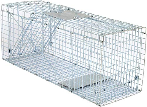 HomGarden 32'' Live Animal Trap Catch Release Humane Rodent Cage w/Upgraded Reinforced Steel Bar for Rabbits, Groundhog, Stray Cat, Squirrel, Raccoon, Mole, Gopher, Chicken, Opossum