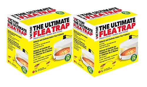 Victor M230A The Ultimate Flea Trap, Non-Poisonous/Odorless, Uses Heat and Light To Attract and Trap Fleas From 30-Feet, Glue Holds Fleas For Monitoring and Removal, Protects Home & Pets (Pack of 2)