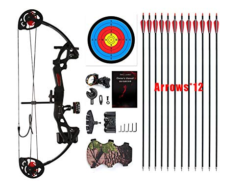 """PANDARUS Compound Bow Topoint Archery for Youth and Beginner, Right Handed,19""""-28"""" Draw Length,15-29 Lbs Draw Weight, 260 fps, Package with Archery Hunting Equipment (Black)"""