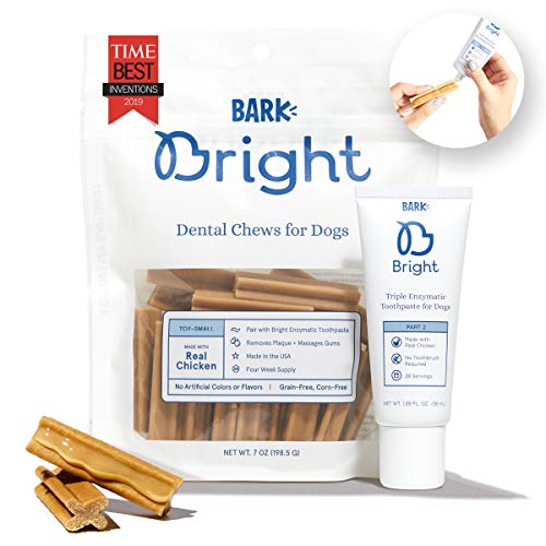 Barkbox Bright Dental Chews 1-Month Supply | Vet Recommended Enzymatic Toothpaste & Chew | Small, Medium, Large Dogs & Cats of Any Size (Enzymatic Gel + Extruded Chew, Small (3-25lb))