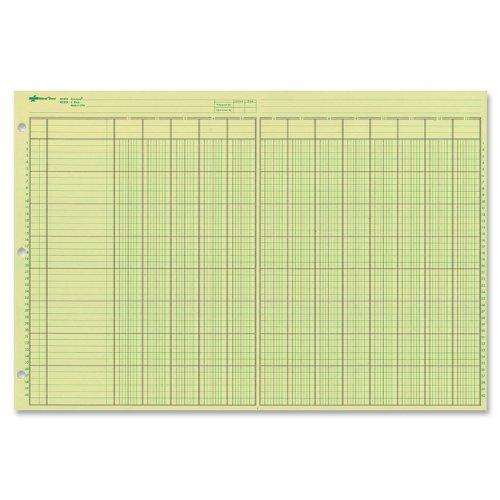 NATIONAL Analysis Pad, 13 Columns, Green Paper, 11 x 16.375', 50 Sheets (45613)