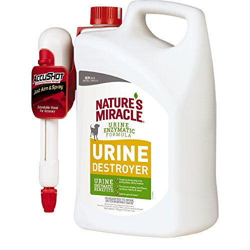 Nature's Miracle P-97004 Urine Destroyer Dog, For Tough Urine Messes,Accushot 170 Oz