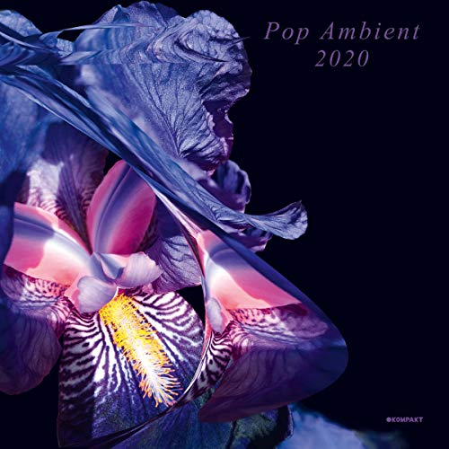 Pop Ambient 2020 (Various Artists)