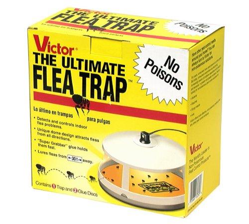 Victor 2 2222 M230 Ultimate Flea Trap (Pack of 2), Multy