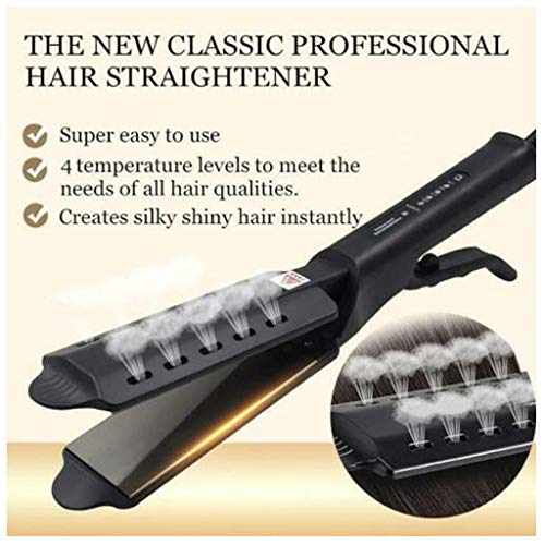 Flurries 60W Hair Straightener - Professional Ceramic Tourmaline Flat Iron with Vapor Out - 4 Level Adjustable Temperature - Built-in Nano PTC - Treatment for Dry Wet Hair Home Salon (Black)