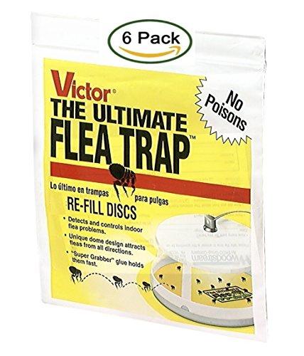 Victor 11 M231 Ultimate Flea Trap, (6 Refills), Yellow