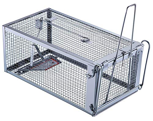 Trap Top Large Live Animal Trap, Excellent Humane Squirrels, Chipmunks, Rats & Mice Cage Trap, Just Catch and Release