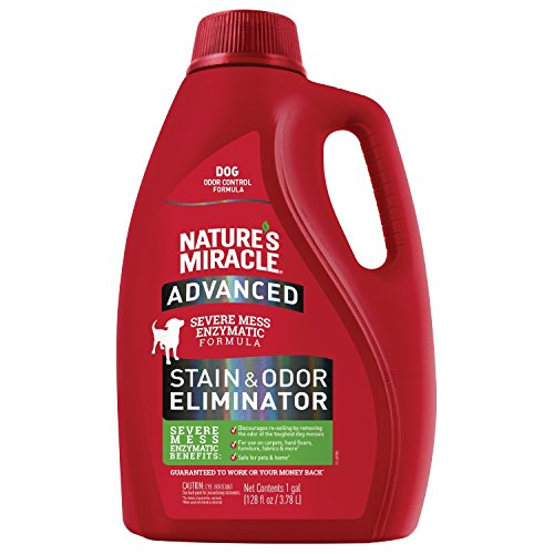 Nature's Miracle Advanced Stain and Odor Eliminator Dog, For Severe Dog Messes, 1 Gallon, Updated Formula