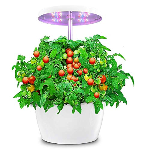 Hydroponic Gardening System, Indoor Herb Garden with Automatic Timer, Hydro Starter Kit for Beginners, Stylish Smart Planter Perfect for Home Kitchen Office, White, 4 Pods