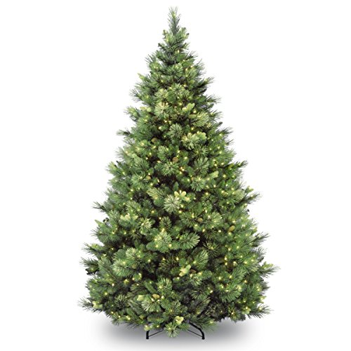 National Tree Company 6.5 Ft Carolina Pine Pre-lit Artificial Christmas Tree   Includes Pre-strung White Lights and Stand