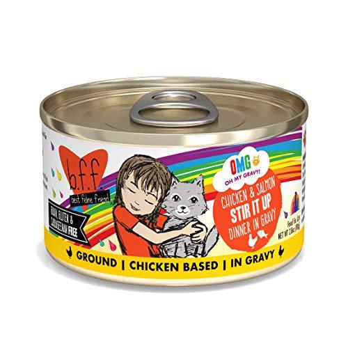Weruva B.F.F. OMG - Best Feline Friend Oh My Gravy!, Chicken & Salmon Stir It Up with Chicken & Salmon in Gravy, 2.8oz Can (Pack of 12)