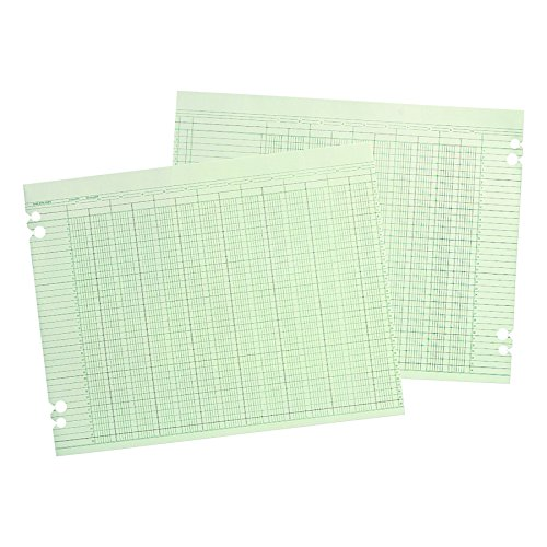 Wilson Jones WLJG3024 Green Columnar Ruled Ledger Paper, Double Page Format, 24 Columns and 36 Lines per Page, 11 x 14 Inches, 100 Sheets per Pack (WG30-24A)