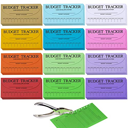 120 Pcs 12 Colors Cash Envelope Budget System Savings Deposit Envelopes Budgeting Envelopes Cash Organizer Envelopes Wallet System Budget Finance Keeper Pay Expense Envelopes and 1 Hole Puncher